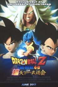Dragon Ball Z: The Real 4-D at 超天下一武道会
