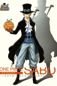 One Piece: Episode of Sabo: The Three Brothers' Bond – The Miraculous Reunion